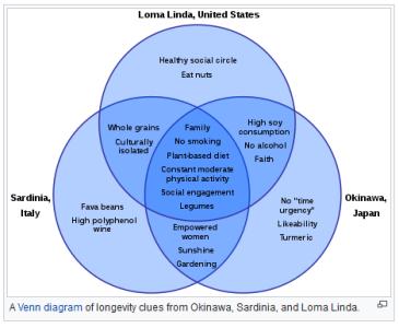 Blue Zone zen diagram